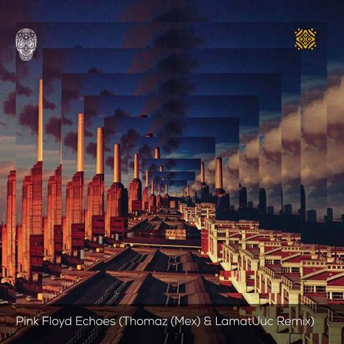 Pink Floyd - Echoes (Thomaz (Mex) & LamatUuc Remix)[Free
