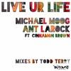 Ant LaRock & Michael Moog 'Live Ur Life' Feat. Cinnamon Brown (Todd Terry DJ Mix)