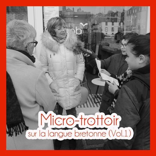 Micro-trottoir sur la langue bretonne avec les écoles du Poan Ben et de Jules Ferry. (Vol.1)