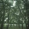 Mujhse Judaa Hokar (Sad Version) - Hum Aapke Hain Koun - Salman Khan & Madhuri Dixit (128  kbps).mp3