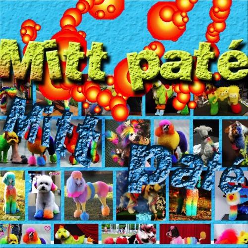 Thumbnail Mitt Pat Eacute 26