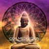 03 - Spirit Medicine - Reversible Transcendence