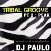 DJ PAULO - TRIBAL GROOVE Pt 2 (PEAK/CIRCUIT) Spring 2018