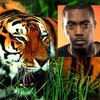 Tiger is Like (Michael Franks & Nas)