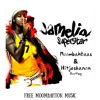 Jamelia - Superstar (Moombahbaas &  Hitjeskanon Bootleg)