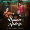 VS SERTANEJO ROMANCE COM SAFADEZA - Wesley Safadão ft. Anitta