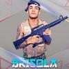 MC Vitinho Avassalador e MC Brisola - Cada Dia da Semana ( DJ Luis LM Edit )