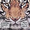 Nevelskiy, Masha March - Leave A Tip (Original Mix).mp3