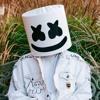 Iced / Marshmello & Logic Type Beat