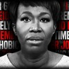 FDR 4072 JOY ANN REID EXPOSED