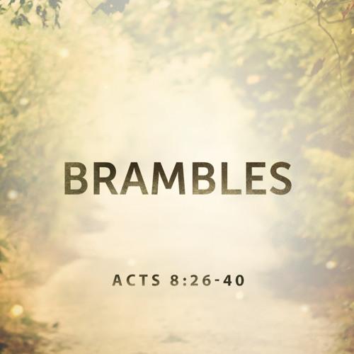 """4-29-2018 """"Brambles"""" Rev.Clay Thomas"""