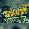 Pitbull - I Know You Want Me ( Erhan Boraer & Mert Kurt Remix)