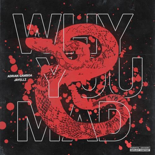 Why You Mad (ft. Jayellz)