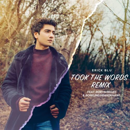 Erick Blu - Took The Words (Remix) ft. Robyn Regan & Borkung Hrangkhawl