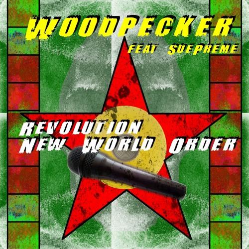 Revolution (Wdpckers Club Mix)