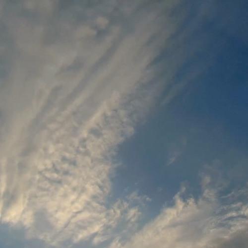 Clouds Set Sail