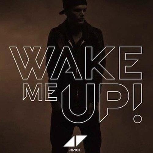 avicii wake me up palco mp3