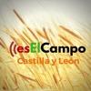 02,05 ES EL CAMPO DE CYL