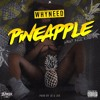 Whyneed - PineApple(Prod by JDS & JD)