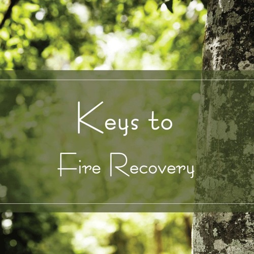 Keys to Fire Recovery
