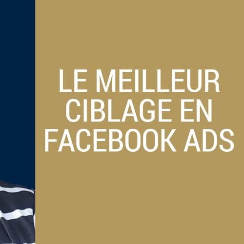 Comment CIBLER vos CLIENTS avec les FACEBOOK ADS