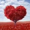 Higher Love Songwriting Task