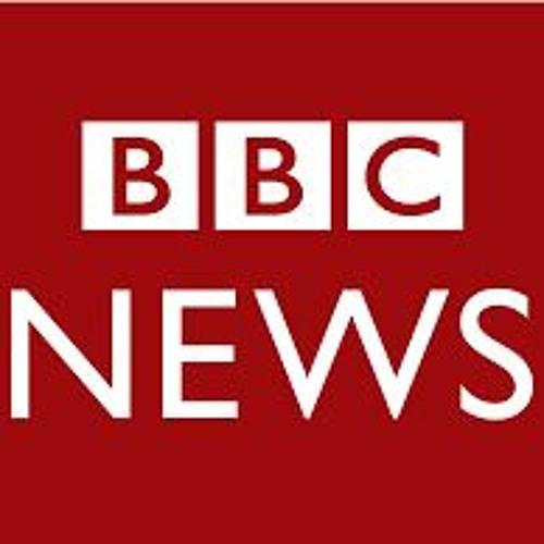 Manya Koetse Talks about Chinese Migrant Writer Fan Yusu - BBC Newshour