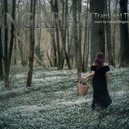 Gabriel Wagner - Transient Time