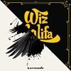 Wiz Khalifa vs Raven (Melodie Rush Mashup Vol.1) | FREE DOWNLOAD