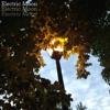 Electric Moon (Single Version) by Frozen Treats