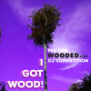 I Got Wood! (Mix For WOODED CITY dj competition)