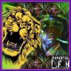 Liontown Skank meets Cooksville Chill (Digital Jott Sound / Last Wordsmith)