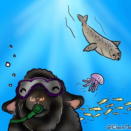 339 Une merveilleuse histoire des océans