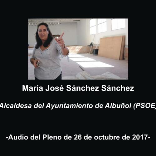 Pleno Albuñol 26-10-2017