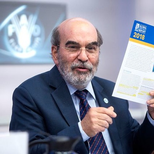 FAO Director-General at the Launch of the FAO-IFPRI Global Food Policy Report 2018