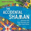Howard G Charing - Interviewed about his new book 'The Accidental Shaman' on the Donna Seebo Show