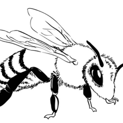 Let It Bee - A Bee's Perspective - Surround Sound Project - Stereo Mix
