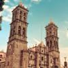 Padilla-Missa 'Ego flos campi' - Sanctus & Benedictus / The Advent Choir