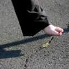 Steppin' On The Cracks - Puppet (Doug & Kurt Mason, Tom Kelly, Jeff Gerald))