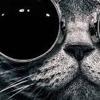 Depeche Mode -   StrangeLove (man project live rmx)