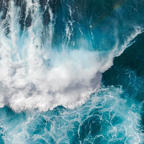 Ocean's Forms: Process, Structure, and Imagination at Sea