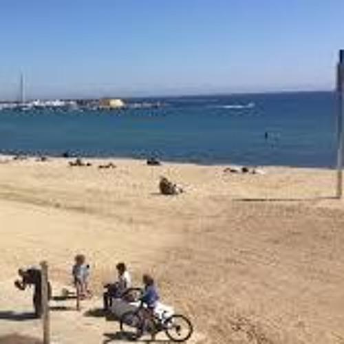 L'estat de les platges de Barcelona