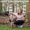 65 Berichten Van De Lij