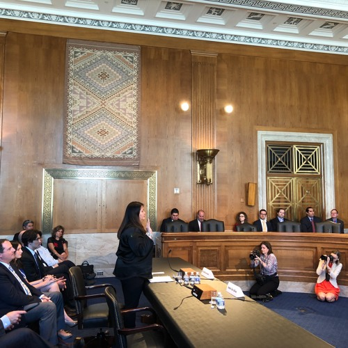 Tara Sweeney Confirmation Hearing - Assistant Secretary for Indian Affairs