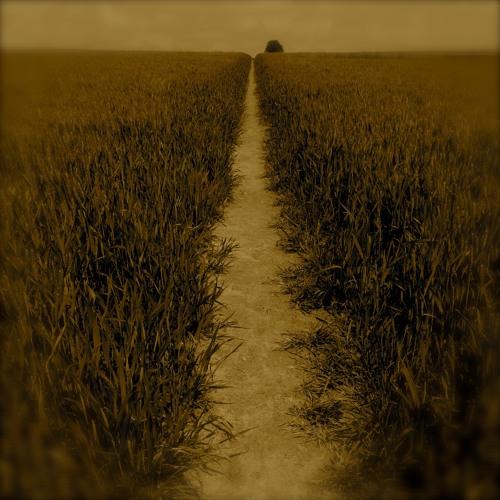 As I Am Walking (I Am Becoming)