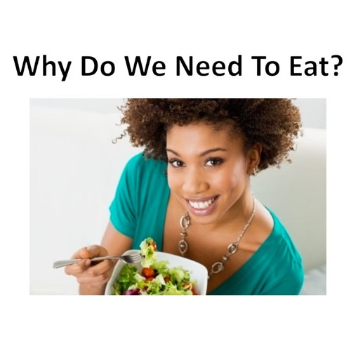 Why Do We Need To Eat