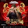 Que Rico Esa Trompeta #aleteo507 Mixing By DANIEL PARRANDA (AMG Anniversary) mp3