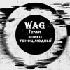 WaG - Телки,водка,танец Модный