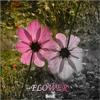 SNOZZ - Flower (Original Mix)