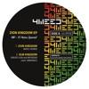 Dub Kingdom - Dread Lion & Mr Biska meet Vibronics